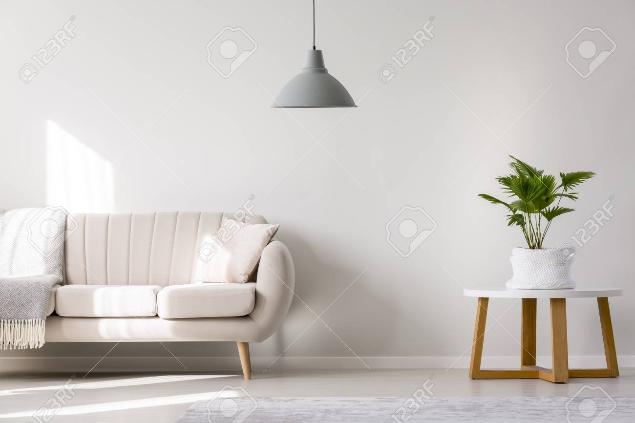 photo beige sofa in simple living room interior with palm plant on white round table and gray lamp