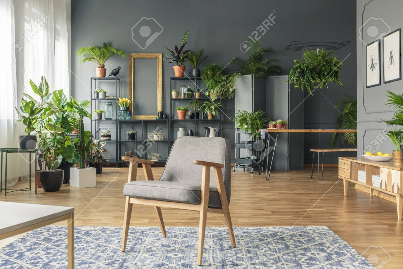 Vintage, gray armchair in the center of a tropical living room..