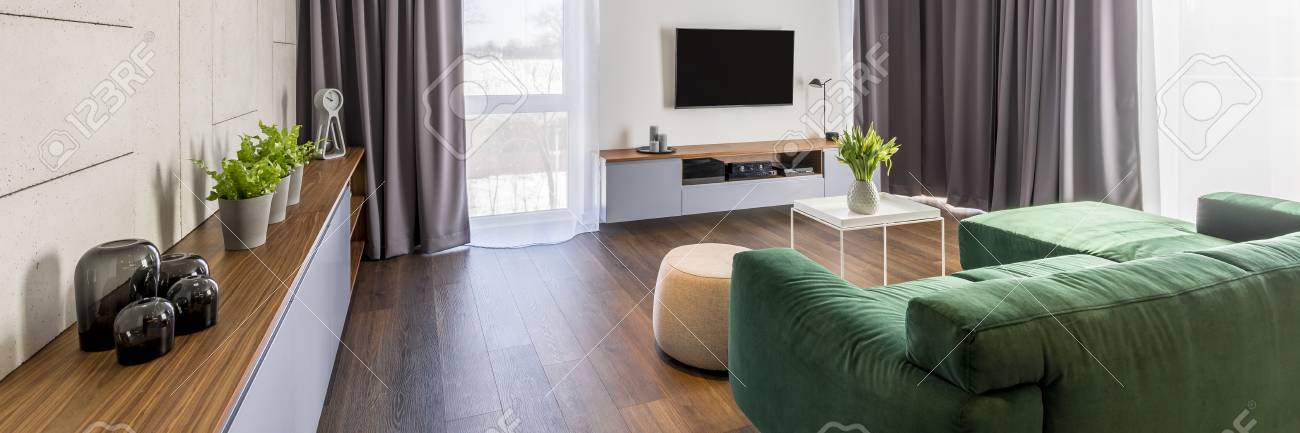 Living room interior with a green corner sofa, cabinet with plants..