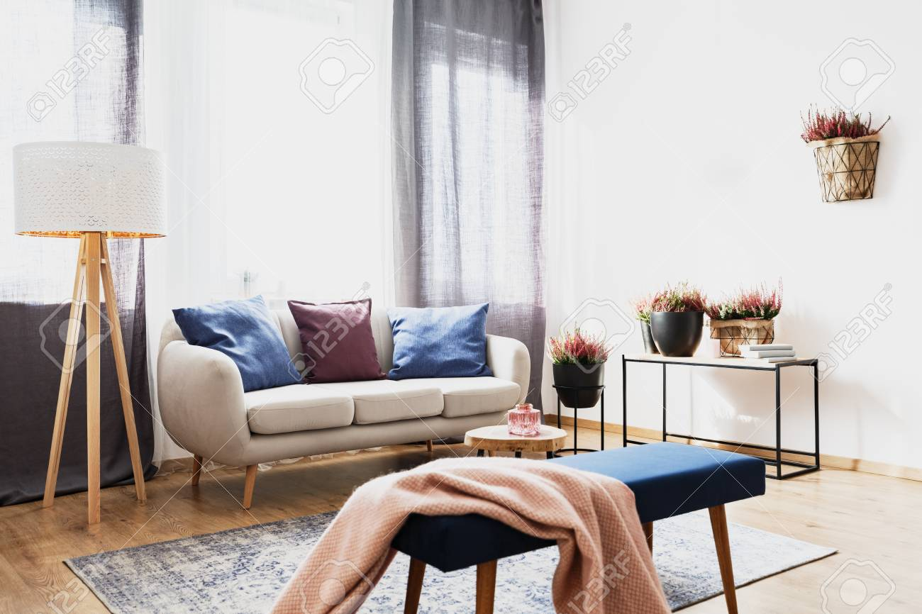 Pink Blanket On Blue Bench In Bright Living Room Interior With Stock Photo Picture And Royalty Free Image Image 104556763