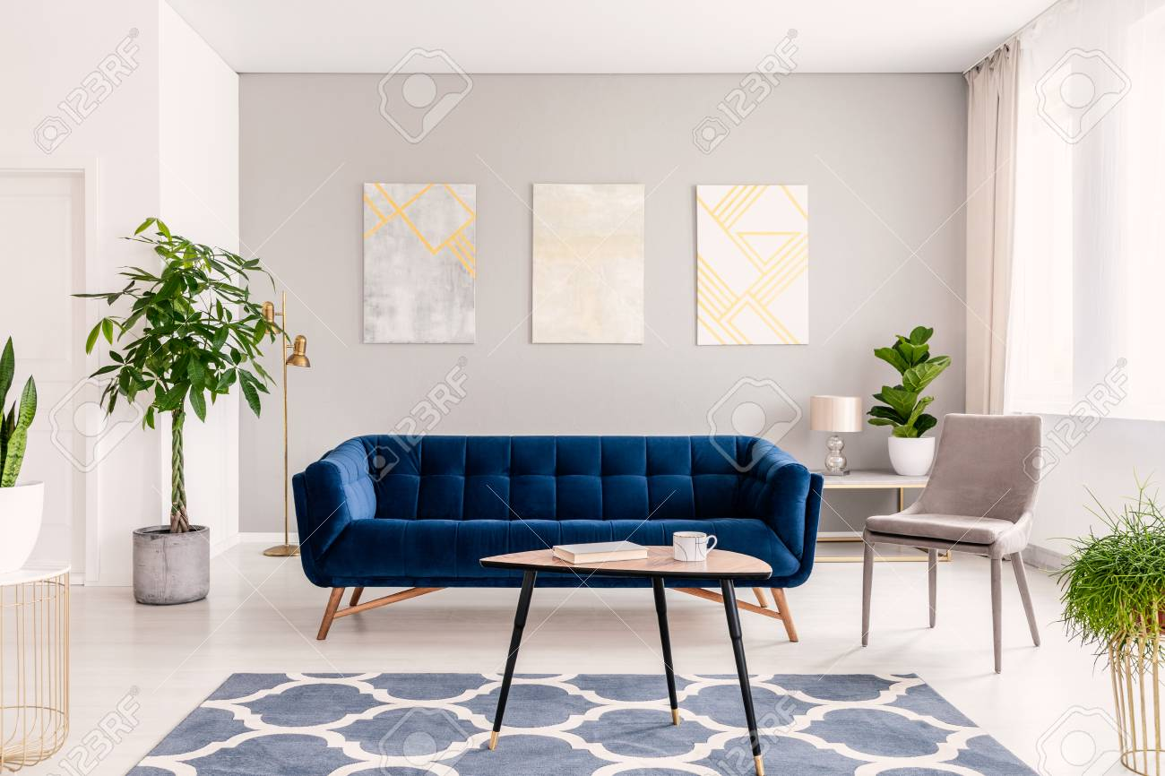 Real Photo Of Plants Dark Blue Sofa And Posters On The Wall Stock Photo Picture And Royalty Free Image Image 107018480