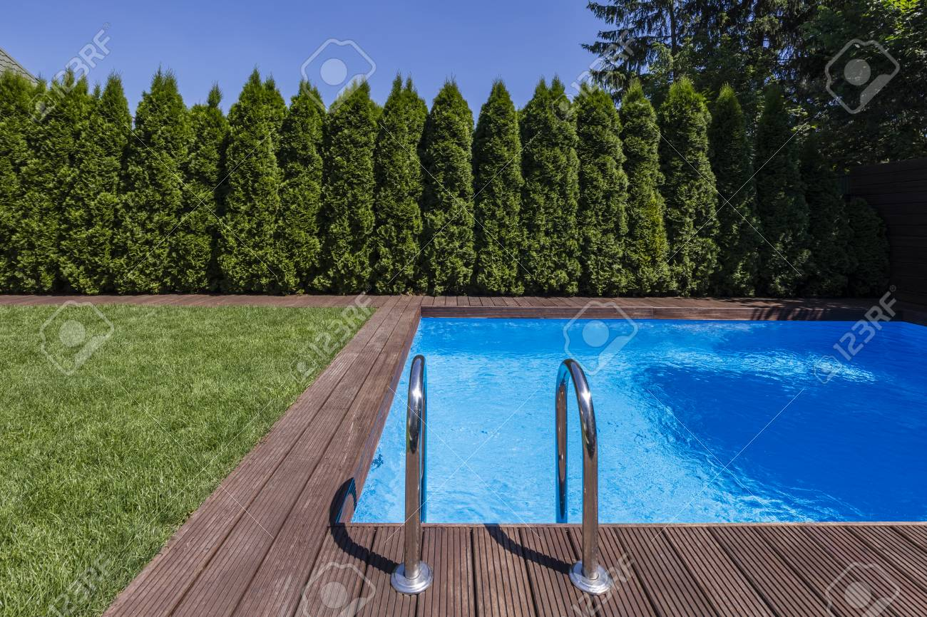 Garden With Swimming Pool swimming pool in the garden with trees and green grass during..