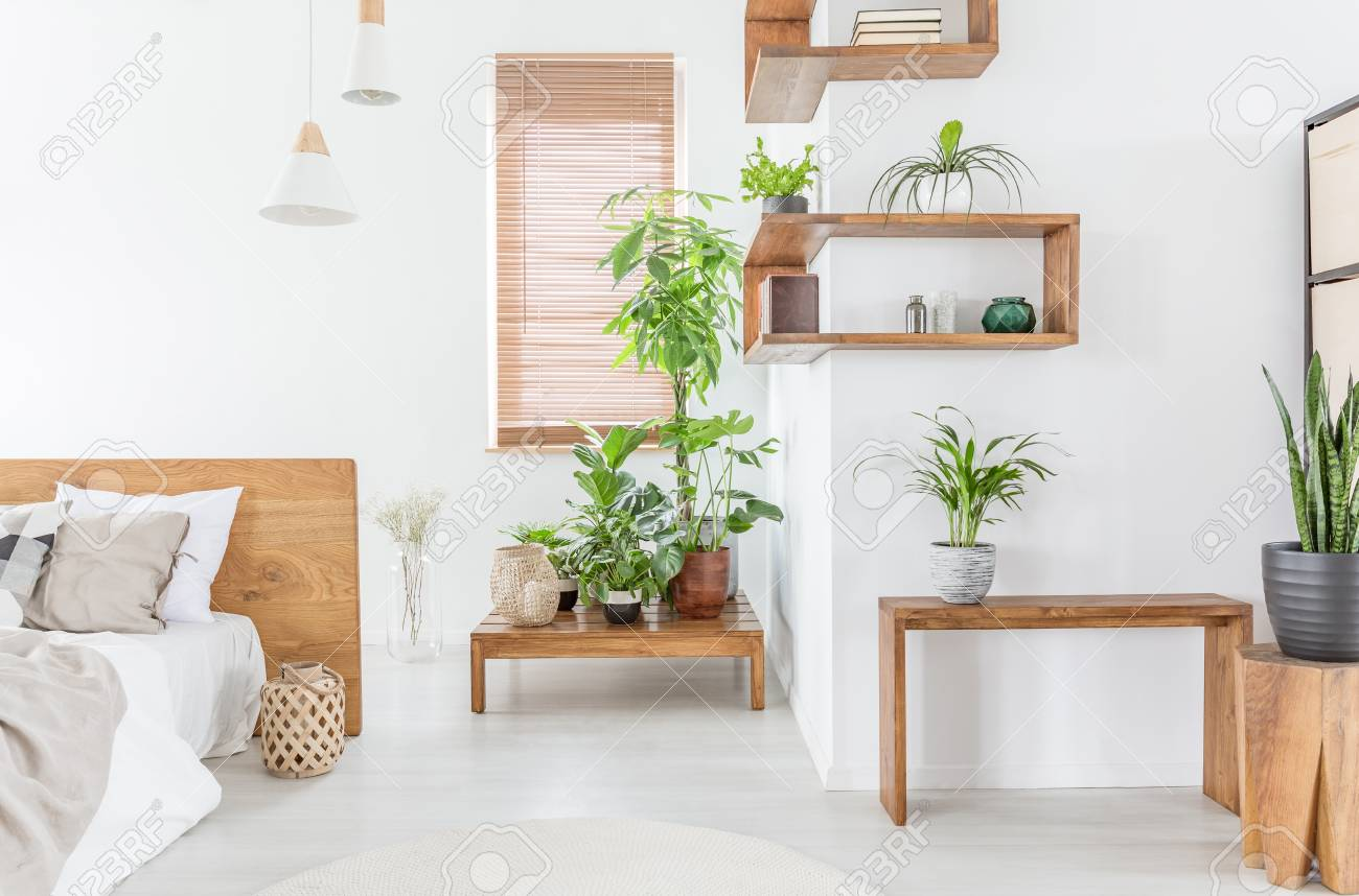 Plants on wooden table in white bedroom interior with bed next..