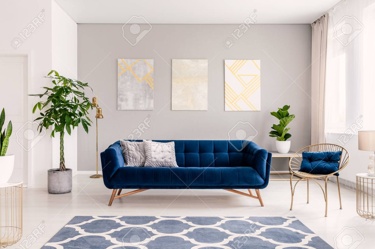 Royal Blue Couch With Two Pillows Standing In Real Photo Of Bright Stock Photo Picture And Royalty Free Image Image 107307710