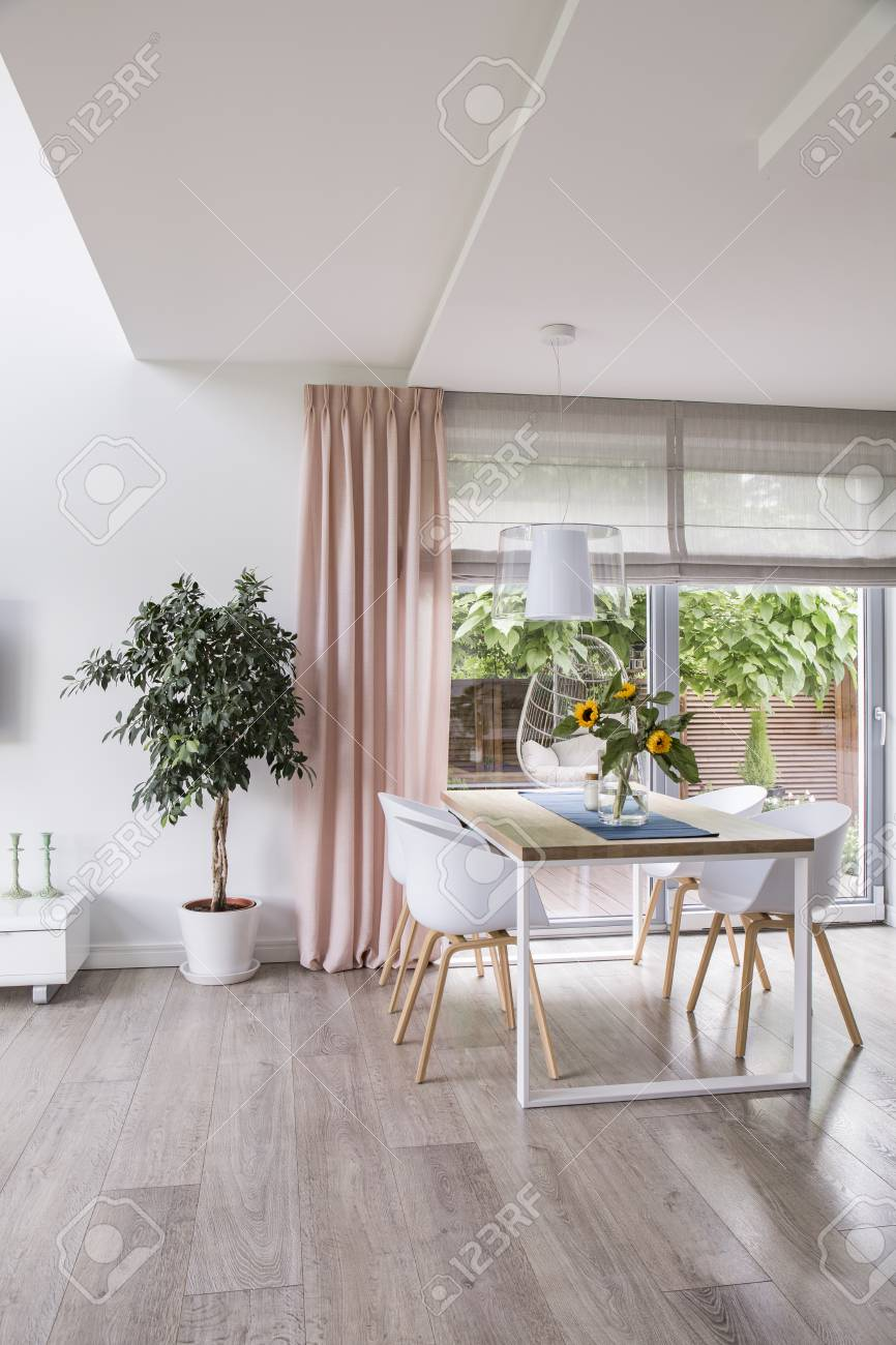 White Chairs At Table Next To Plant In Spacious Dining Room Interior Stock Photo Picture And Royalty Free Image Image 107759966