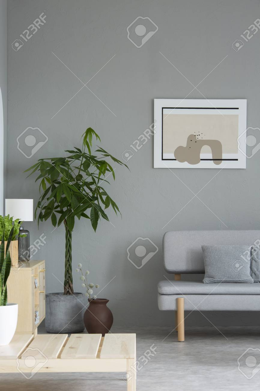 Plant Next To Grey Sofa With Cushion In Minimal Living Room Interior