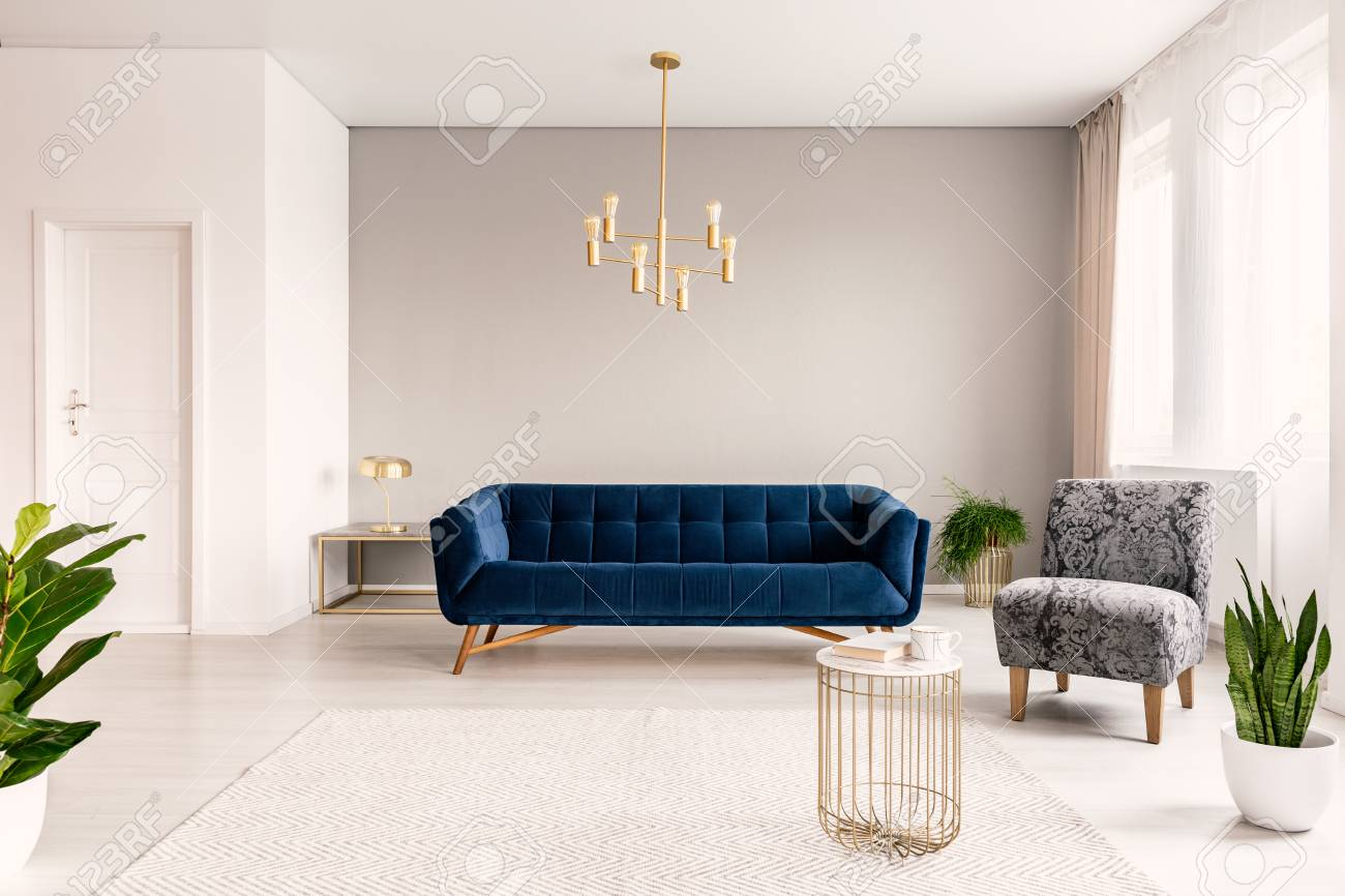 Copy Space Living Room Interior With A Dark Blue Couch A Gray Stock Photo Picture And Royalty Free Image Image 108184425
