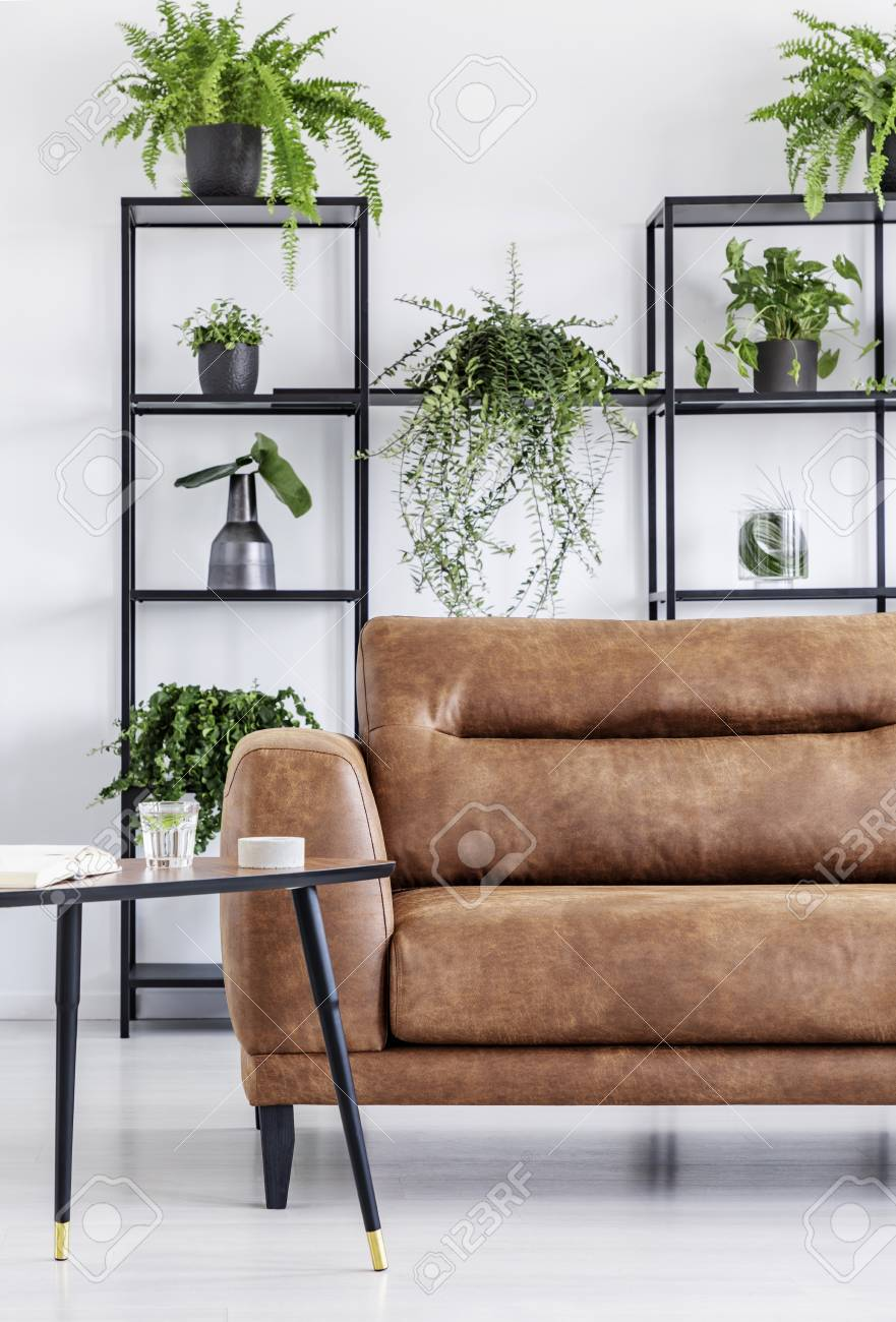 Plants on shelves in white modern living room interior with table..