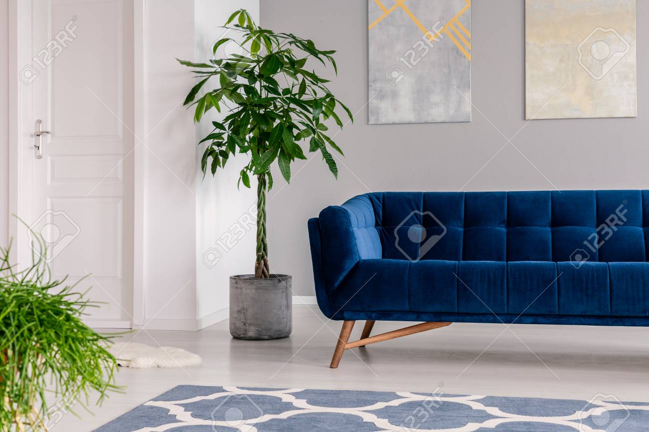 Picture of: Waiting Room Interior In A Luxurious Clinic Furnished With A Stock Photo Picture And Royalty Free Image Image 109107869