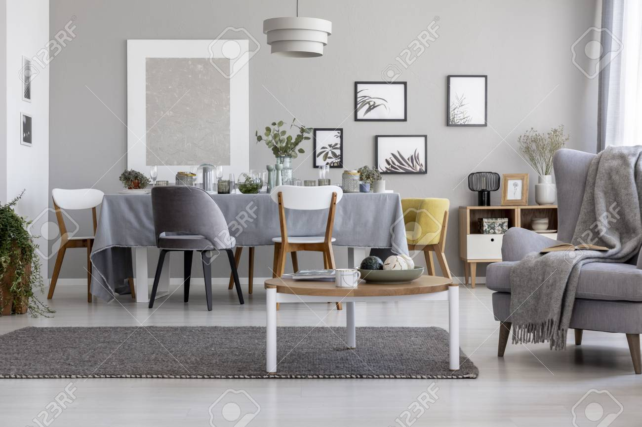 Real photo of light grey living room interior with armchair with blanket and book, coffee table placed on carpet and dining table with elegant dinnerware for family meeting - 111695737