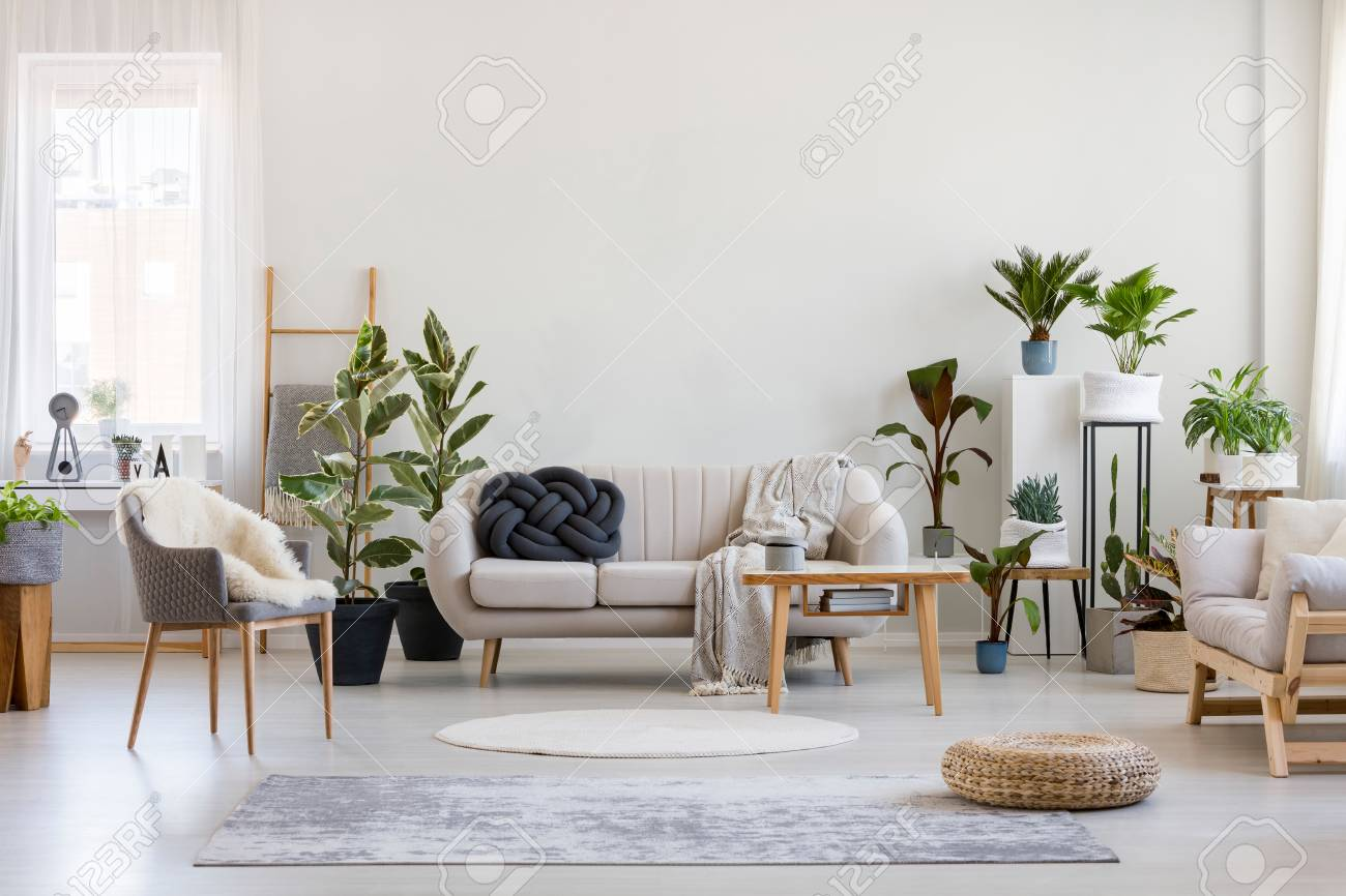 Urban jungle in bright living room interior with white couch..