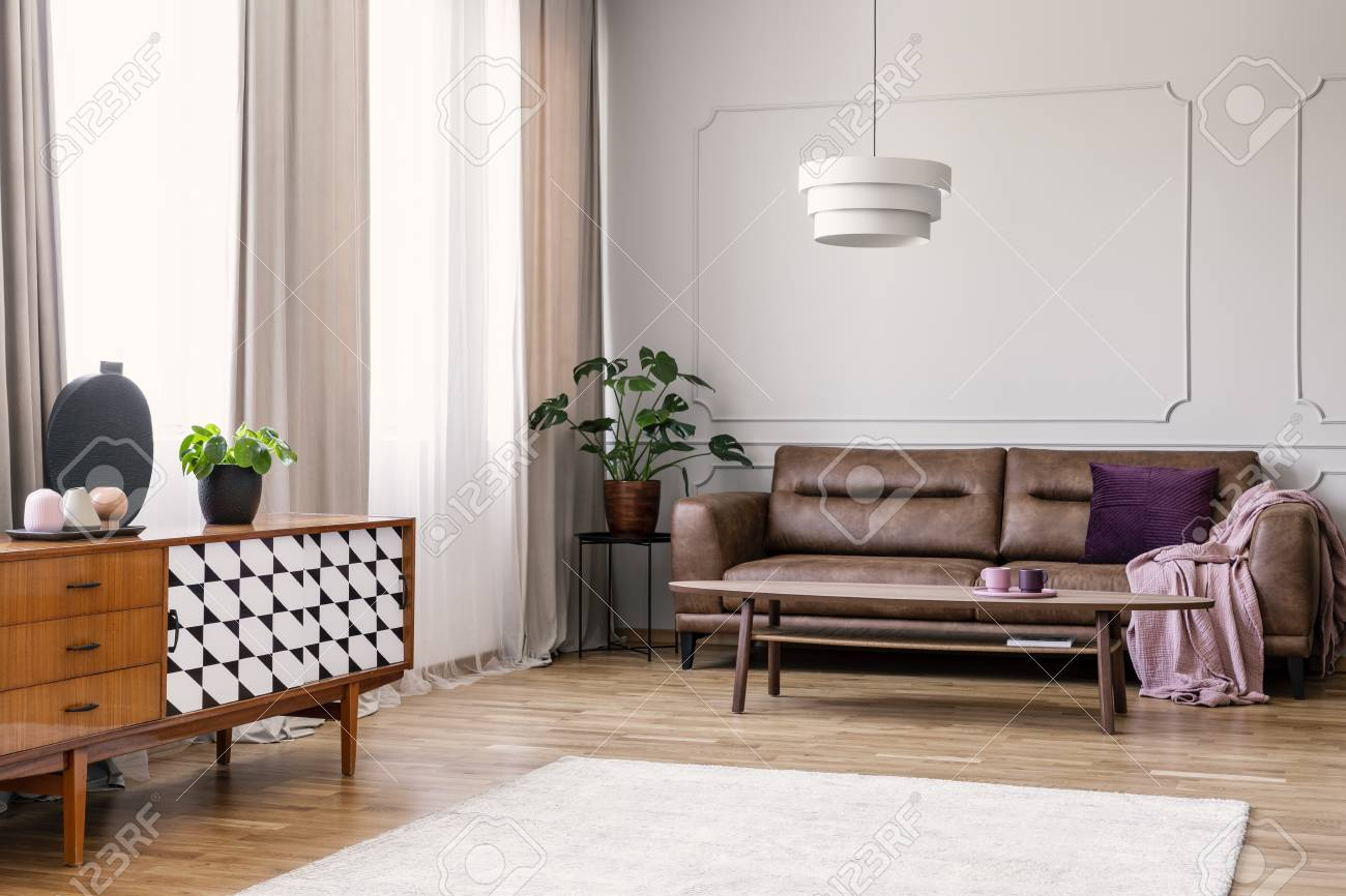 Plant On Wooden Cupboard In Retro Living Room Interior With Leather