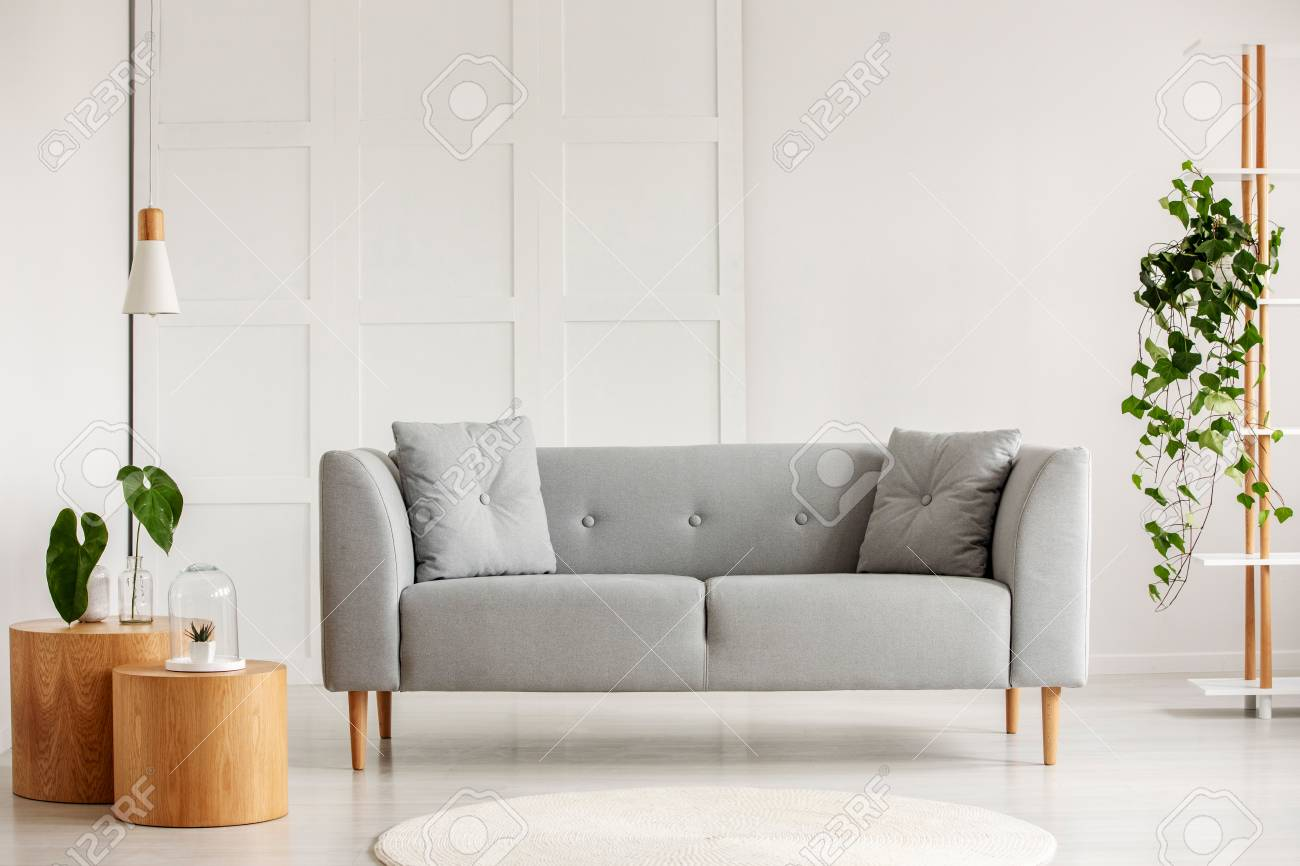 Grey Modern Sofa In The Center Of Living Room