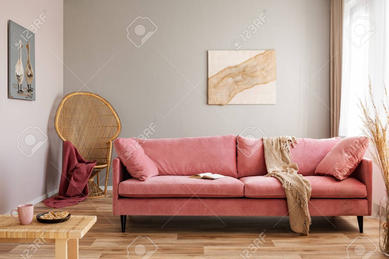 Wicker peacock chair with red blanket behind pink velvet couch - 126441657