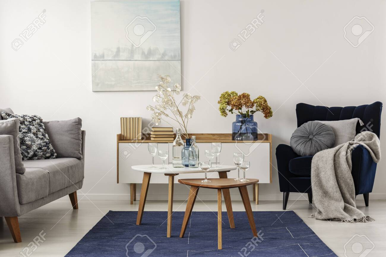 Fantastic Elegant White Grey And Blue Living Room Interior With Scandinavian Inzonedesignstudio Interior Chair Design Inzonedesignstudiocom