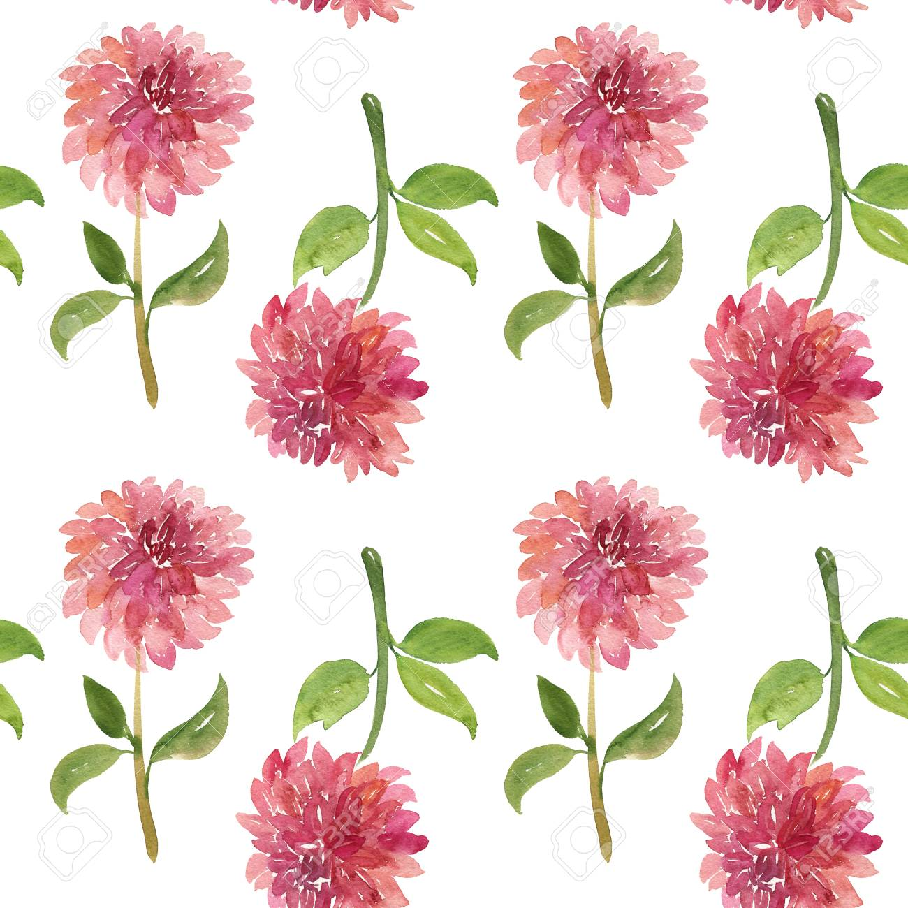 Seamless Pattern Of Red Watercolor Dahlia Flowers With Stems Stock Photo Picture And Royalty Free Image Image 102419606