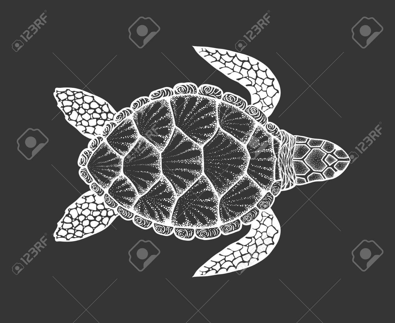 Line Art Illustration Style : Sea turtle in line art style. hand drawn vector illustration