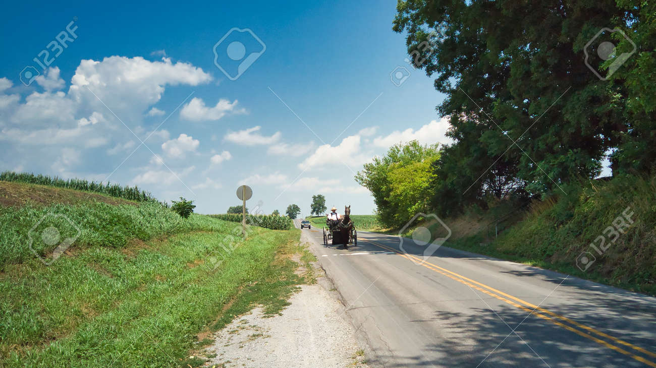 An Amish Couple in a Open Horse and Buggy on a Sunny Day - 165196580