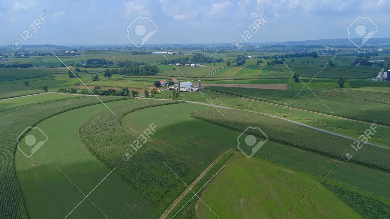 Aerial View of Green Farmlands With Different Crops Growing in the Fields on a Sunny Day - 165159432