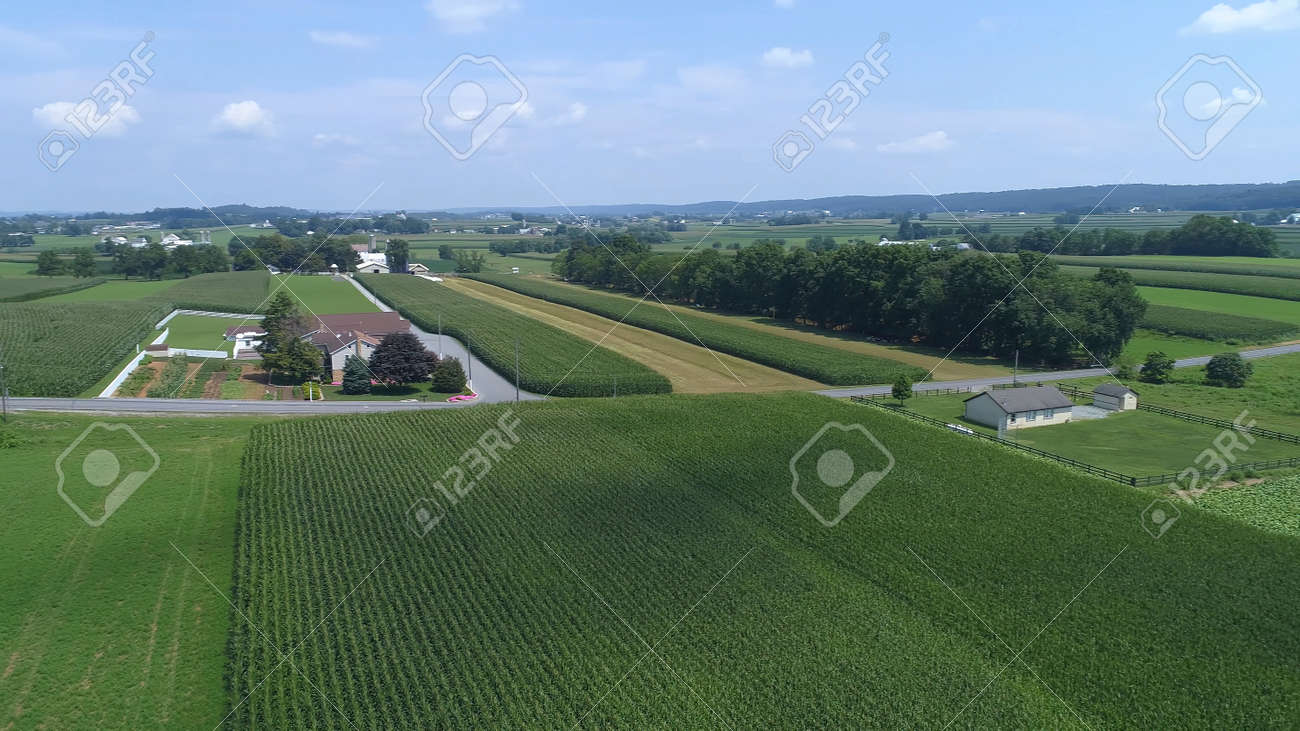 Aerial View of Green Farmlands With Different Crops Growing in the Fields on a Sunny Day - 165159434