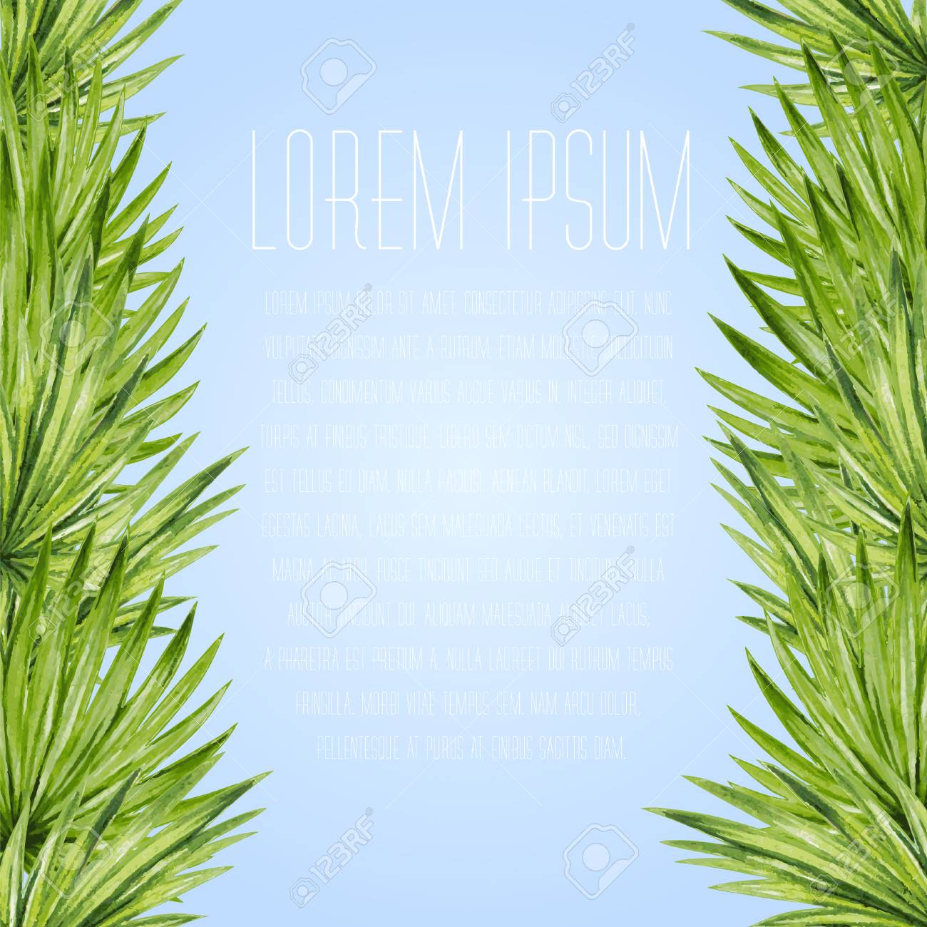 Palm leaves background. Tropical greeting card. - 43872337
