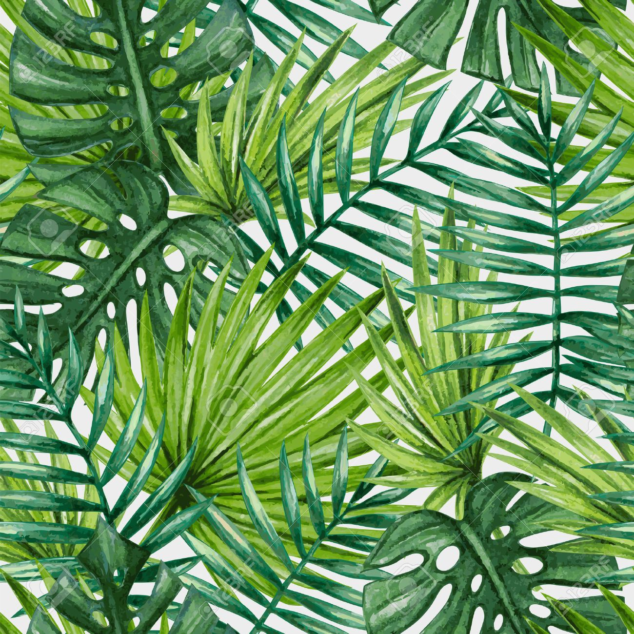 Watercolor tropical palm leaves seamless pattern - 53981480