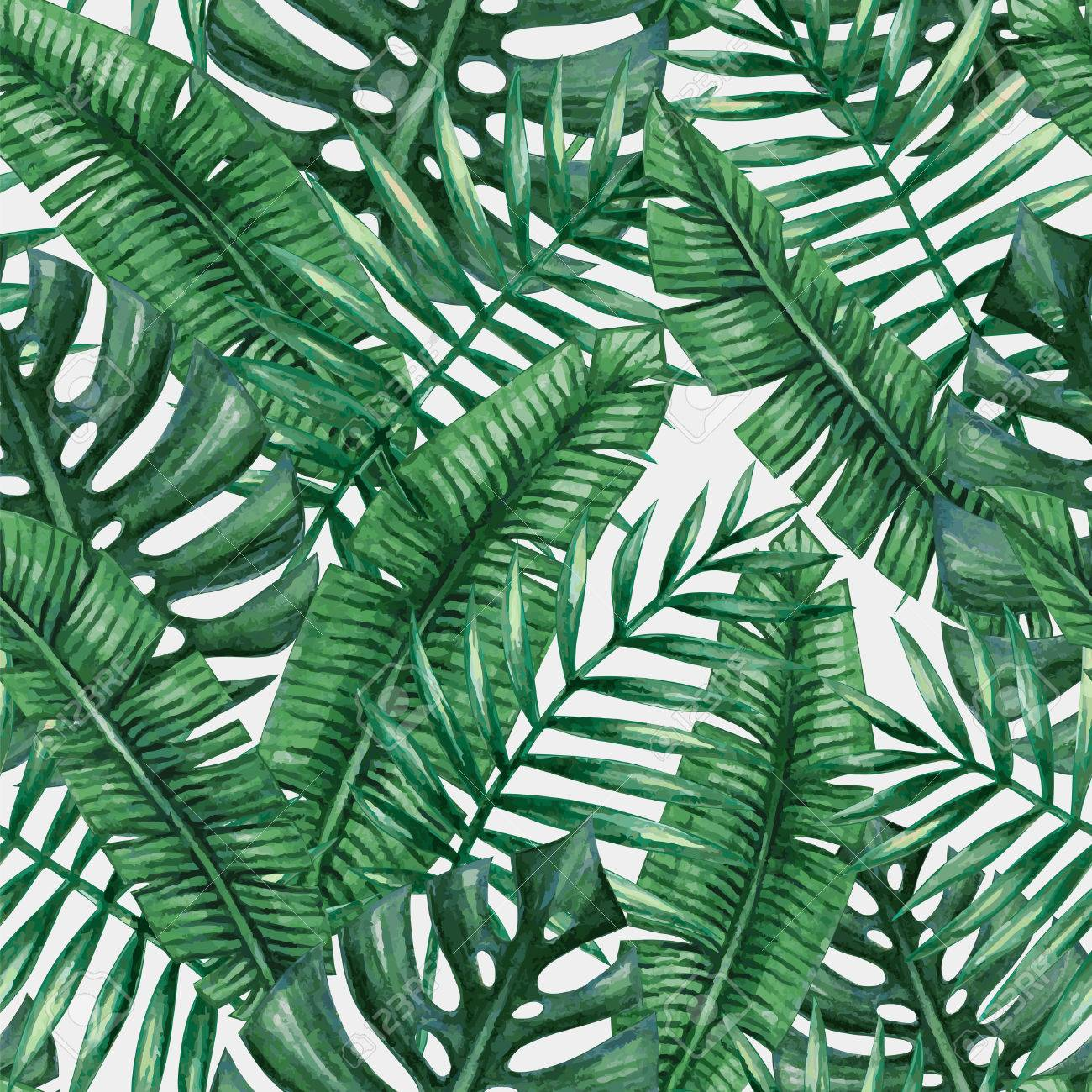 Watercolor tropical palm leaves seamless pattern. - 55951369