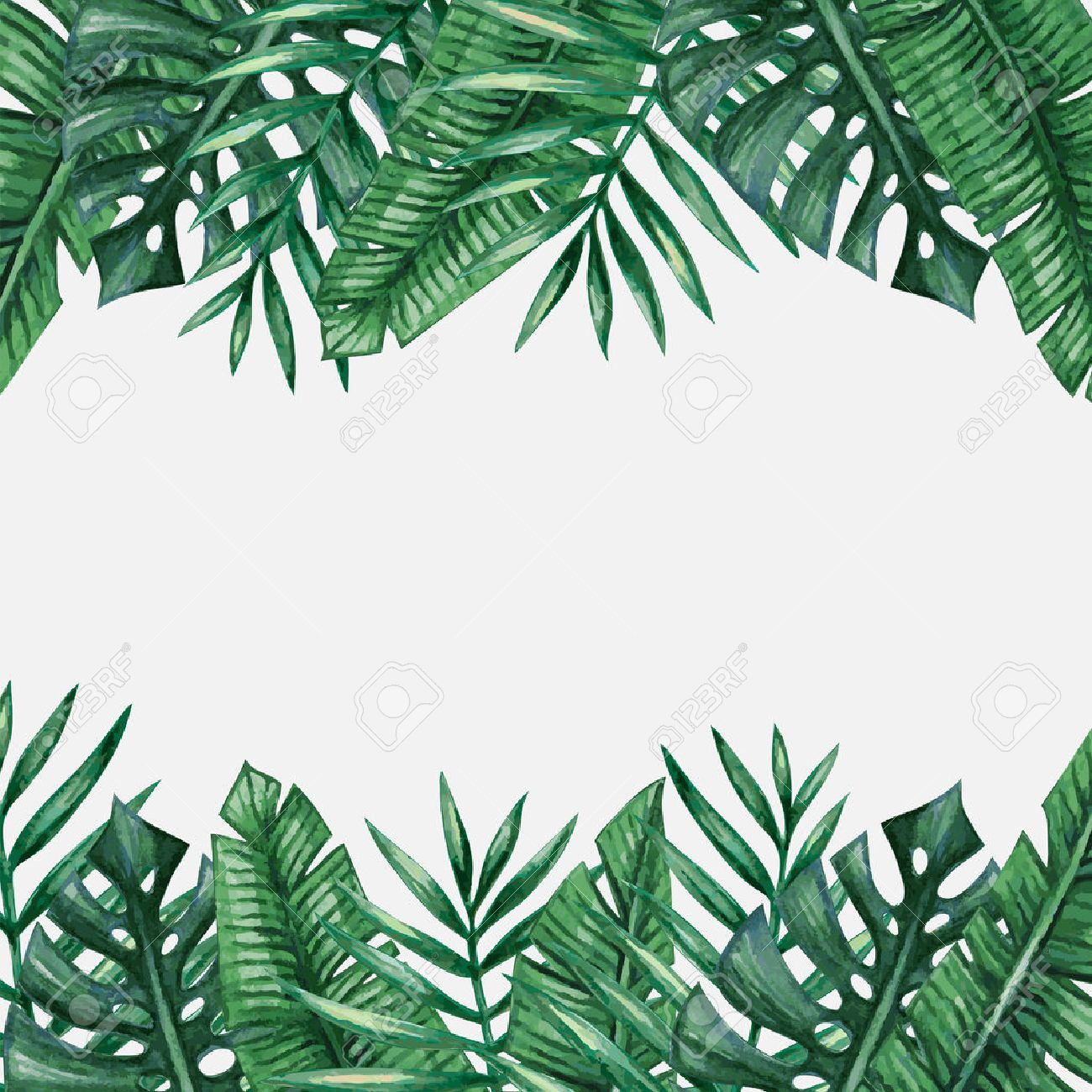 Palm tree leaves background template. Tropical greeting card. - 55951769