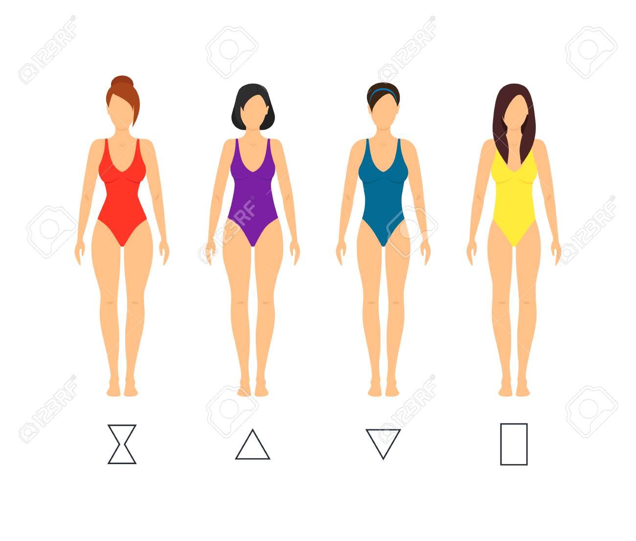 6f037aa297e Cartoon Female Body Shape Types Woman Anatomy Figure Constitution Flat  Design Style. Vector illustration Stock