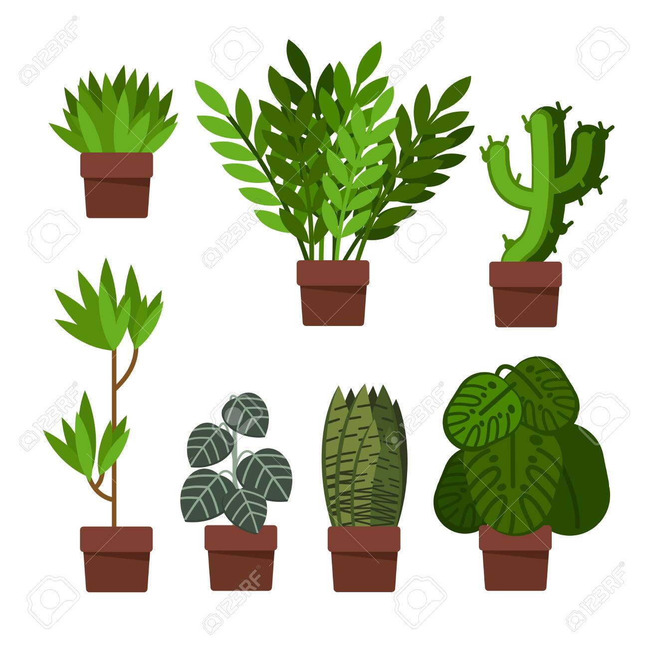 Cartoon Different Green Plants Pots Icons Set Flat Design Style Include of Cactus and Monstera. Vector illustration of Icon Plant - 151363509