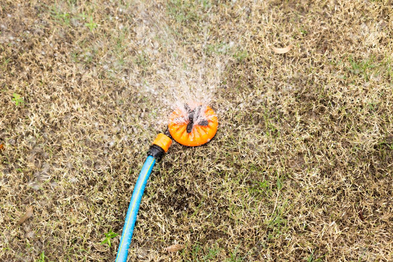 Watering Dry Grass Lawn With Sprinkler In The Garden Stock Photo ...