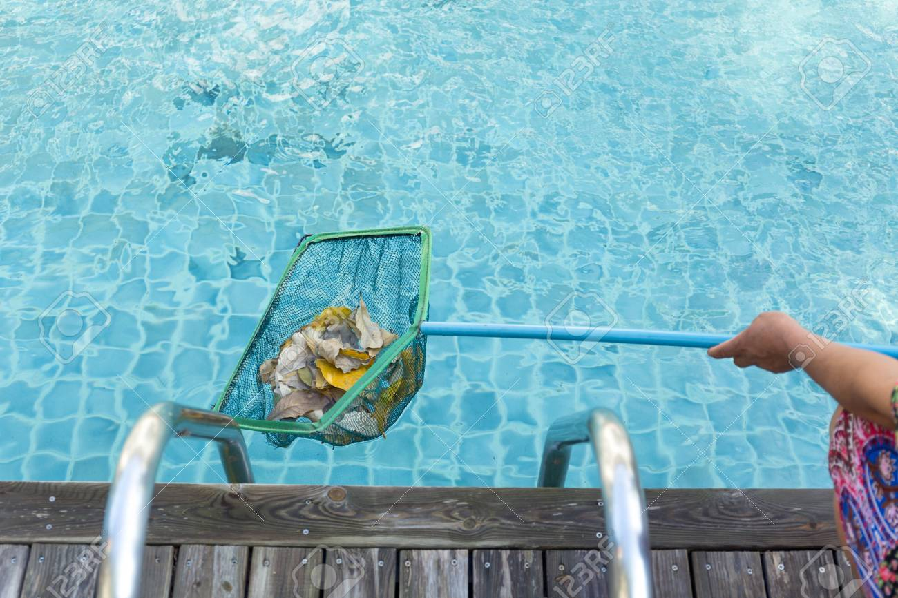 Woman cleaning swimming pool of fall leaves with cleaning net..