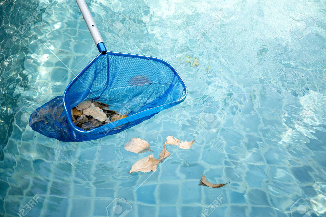 Cleaning Swimming Pool Of Fallen Leaves With Blue Skimmer Net ...