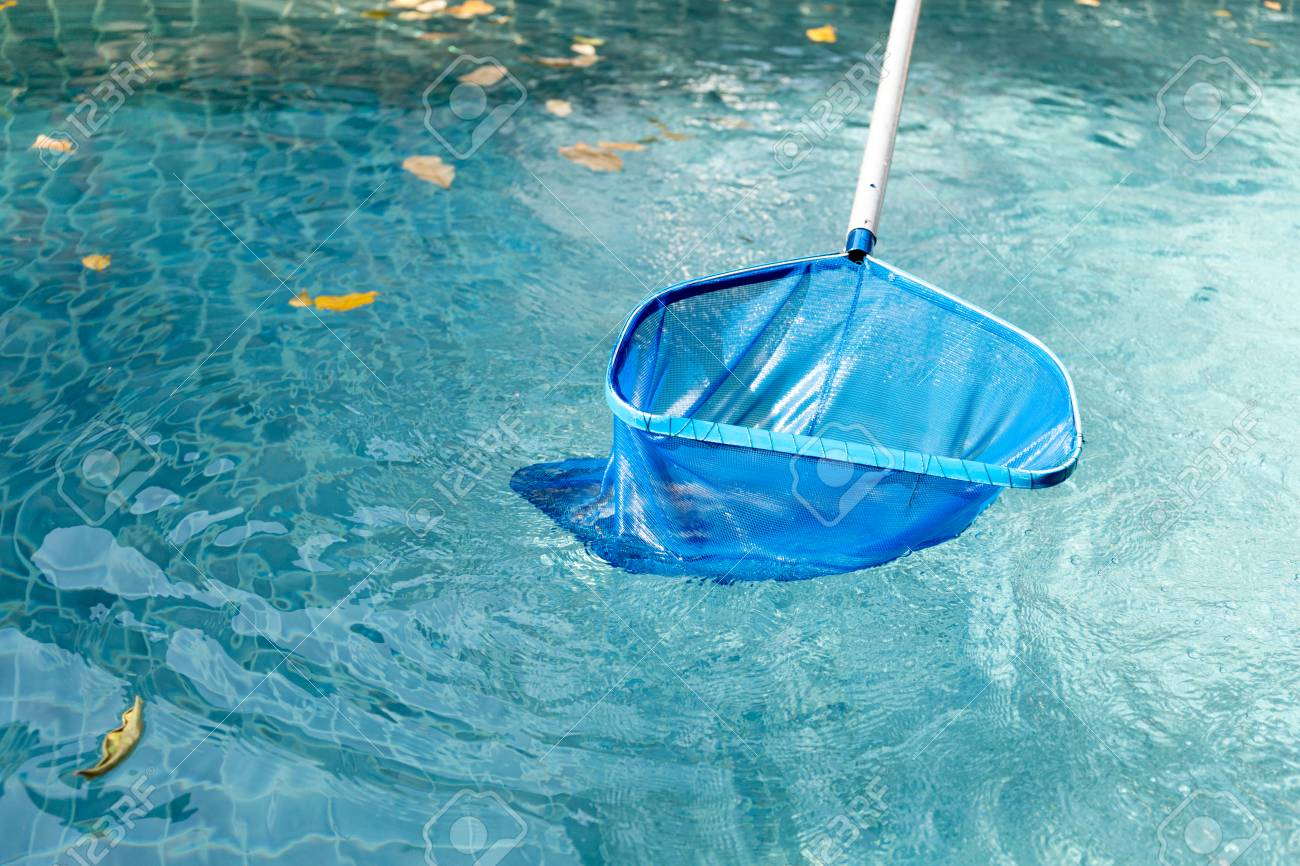 Cleaning swimming pool of fallen leaves with blue skimmer net..