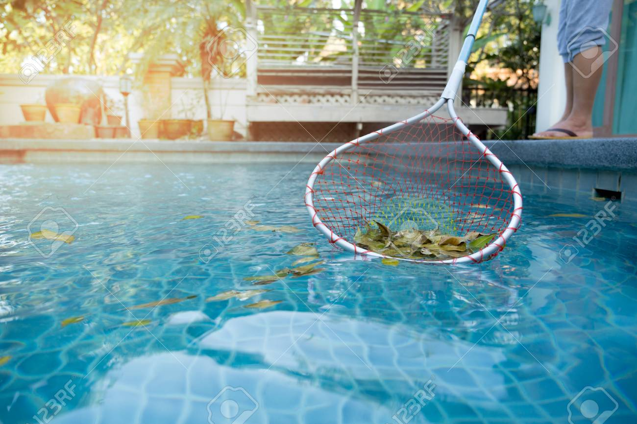 Woman cleaning swimming pool of fallen leaves with net in summer