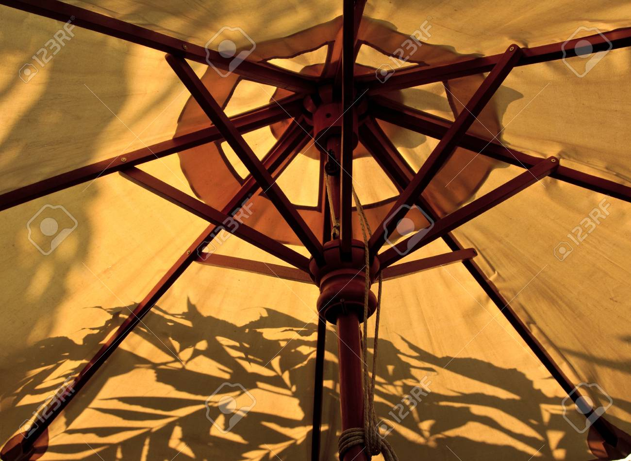 Umbrella Stock Photo - 16850881