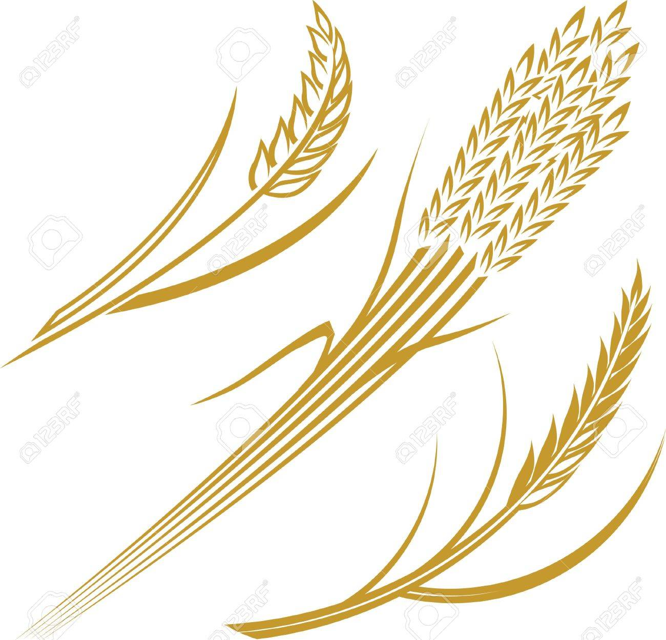 Wheat Icons Stock Vector - 17443060