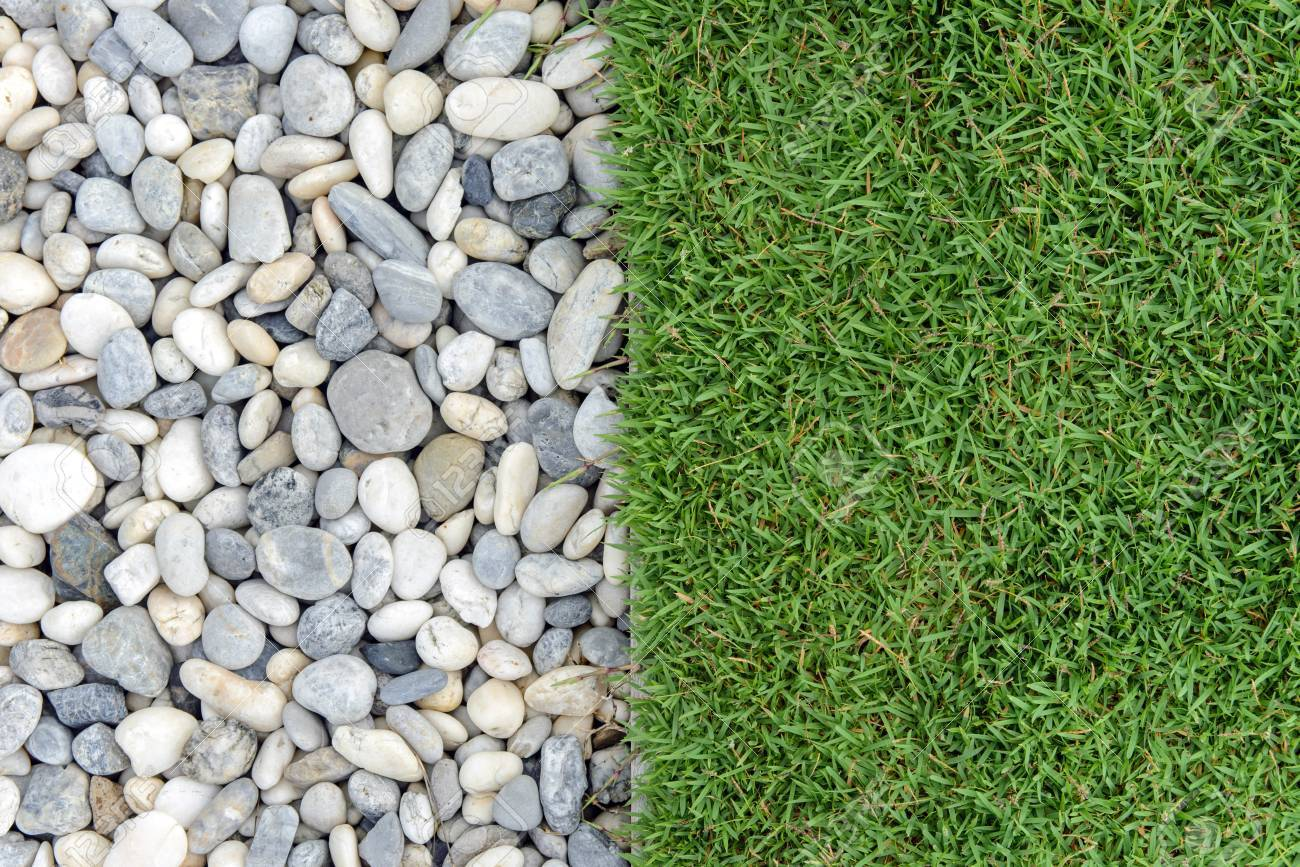 Green Grass With Pebbles Stone And Grass In Garden Grass With