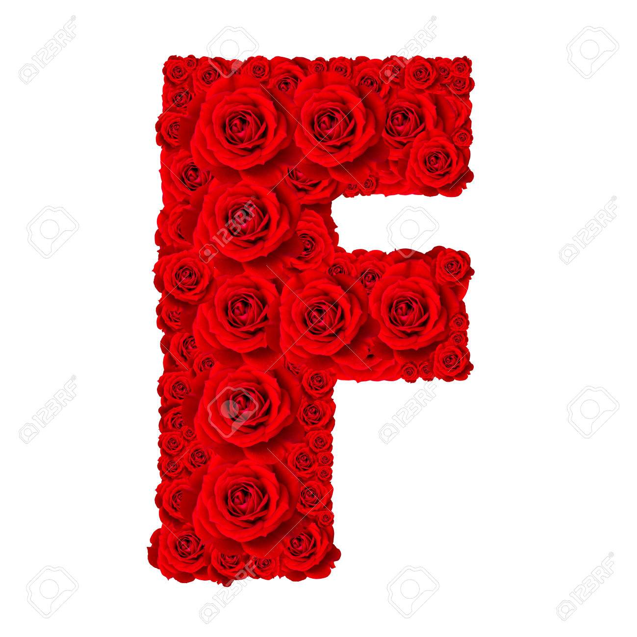 Rose Alphabet Set Alphabet Capital Letter F Made From Red Rose Blossoms Isolated On White