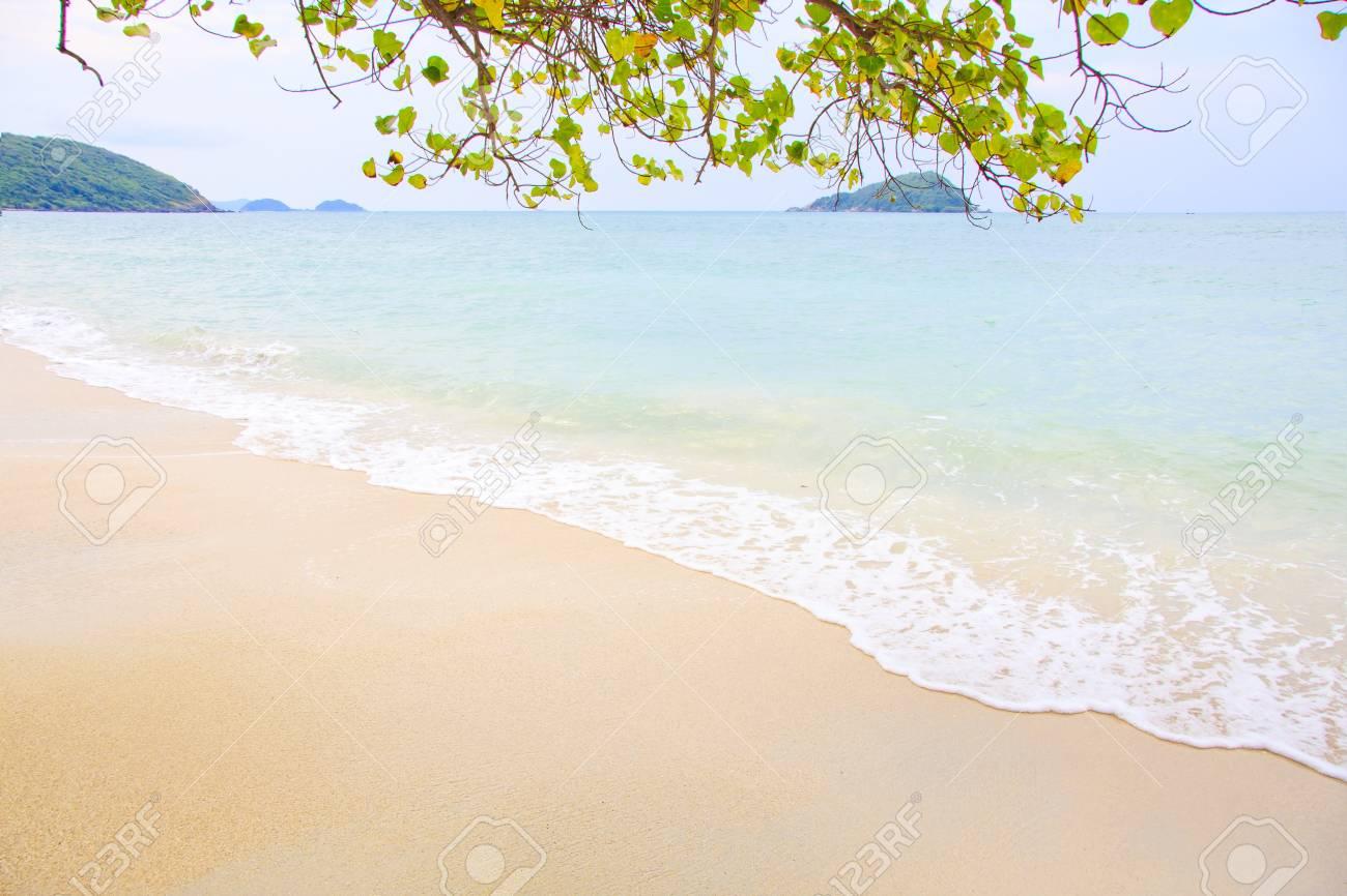 beach and tropical sea Stock Photo - 12251701