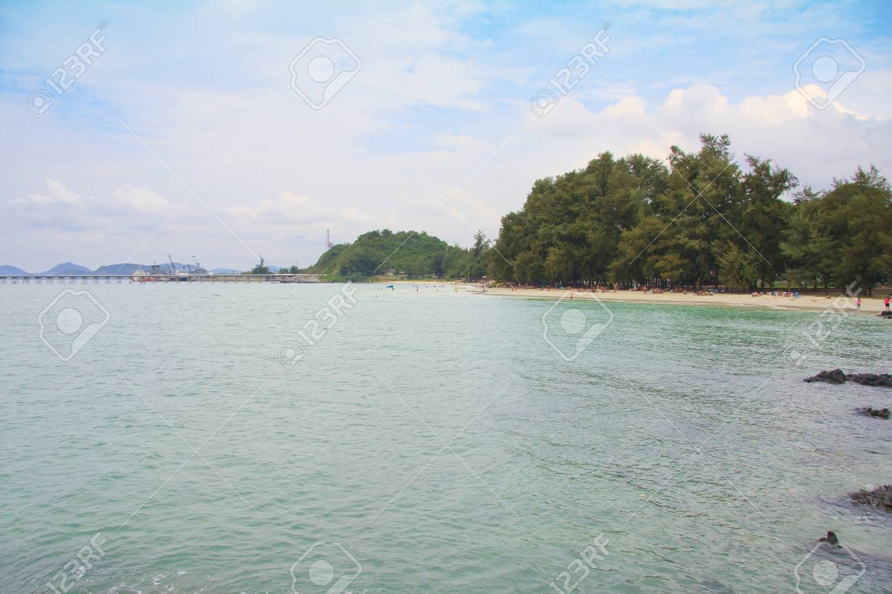 Beach with coconut palm trees Stock Photo - 13130569