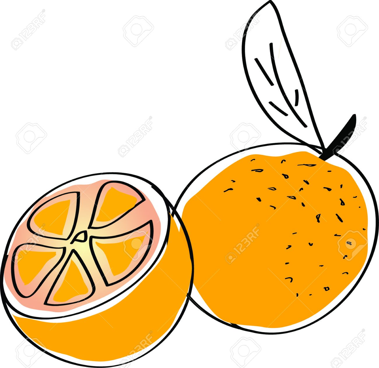 vector orange royalty free cliparts vectors and stock illustration rh 123rf com orange clipart fruit orange clipart image