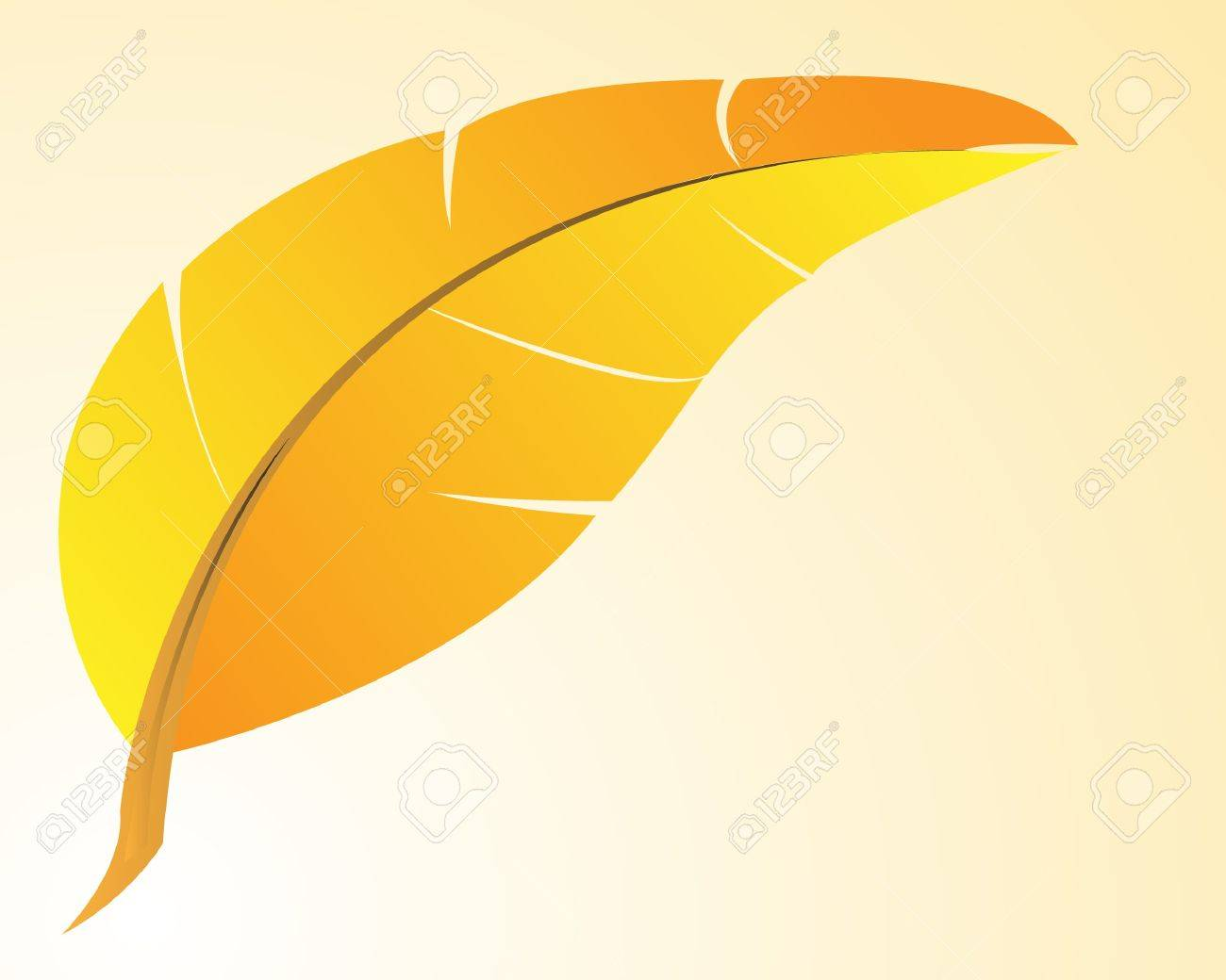 Feather Stock Vector - 14454213