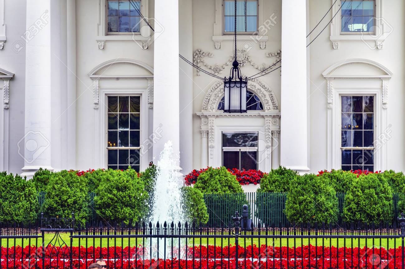 White house flowers manly gallery flower decoration ideas exelent white house flowers manly photo wedding and flowers white house flowers manly image collections flower mightylinksfo