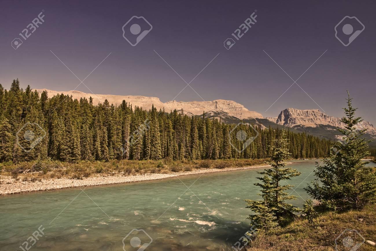 Bow River - Banff National Park - Alberta - Canada Stock Photo - 6751460