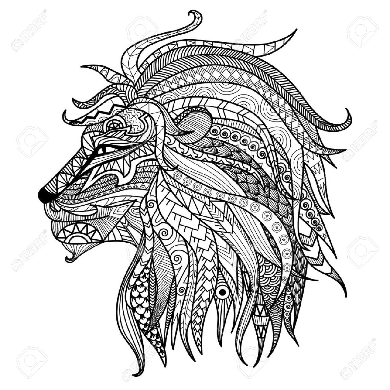 Hand Drawn Lion Coloring Page. Royalty Free Cliparts, Vectors, And ...