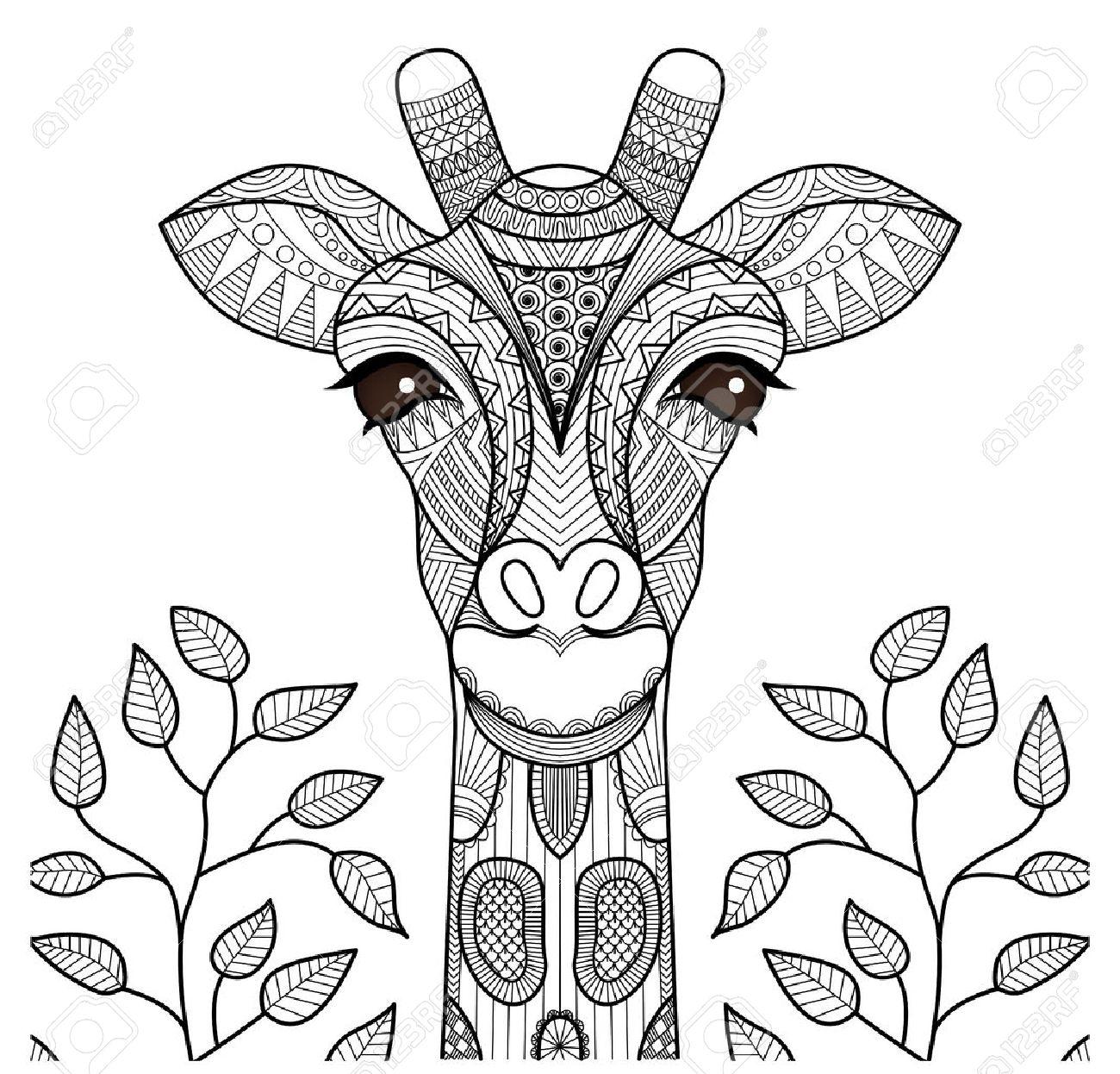 Zentangle Giraffe Kopf Für Malvorlagen, Shirt-Design Und So Weiter ...