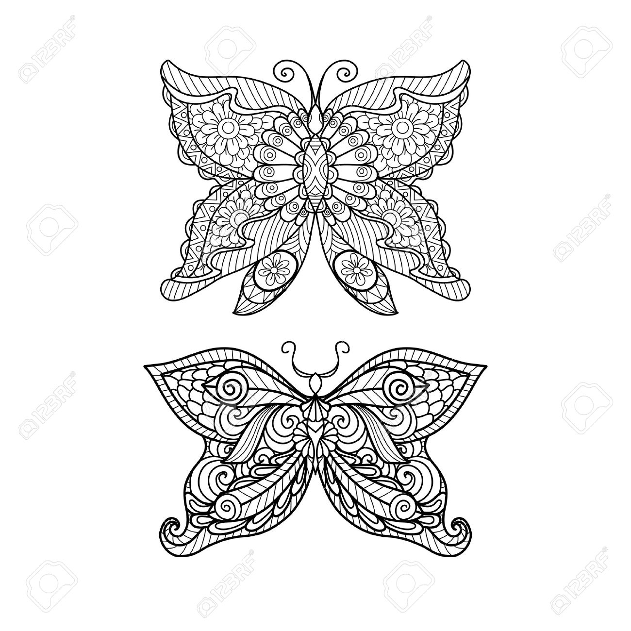 Shirt design book - Hand Drawn Butterfly Style For Coloring Book Shirt Design Or Tattoo Stock Vector 46617472