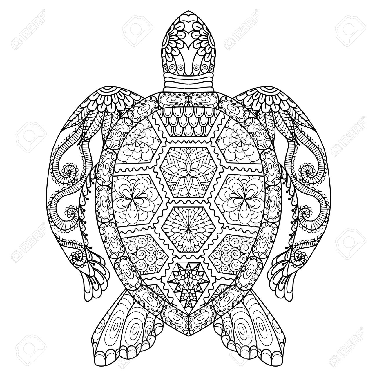Coloriage Adulte Effet.Coloriage Adulte Tortue