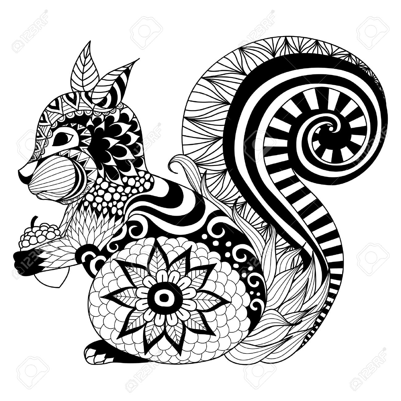 Hand Drawn Squirrel Zentangle Style For Coloring Booktattoot Shirt Designlogo